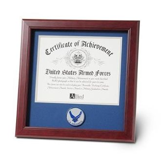 Custom Made Air Force Medallion Certificate Frame 8 By 10
