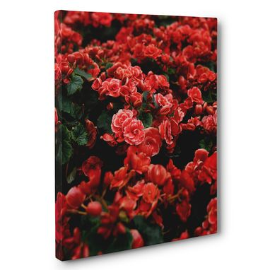 Custom Made Beautiful Roses Photography Canvas Wall Art