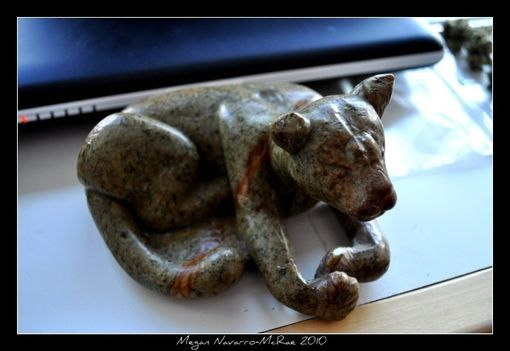 Custom Made The Canadian Mountain Lion (Cougar) - For Sale