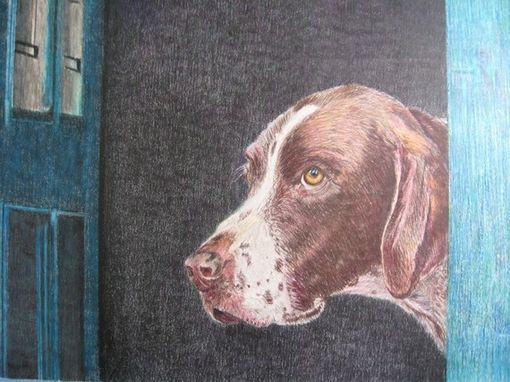 Custom Made Custom Dog Portrait In Colored Pencil