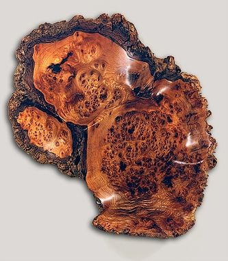 Custom Made English Elm Burl Wallpiece