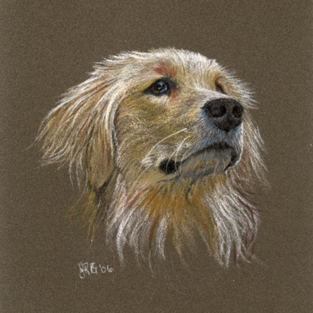 custom made commission portraits in soft pastel on ampersand