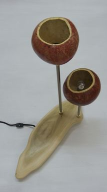 Custom Made Custom Gourd Lamp