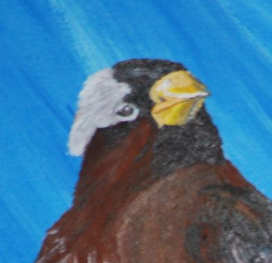 Custom Made Painting: Dreaming Of Spring: Grey-Crowned Rosy Finch
