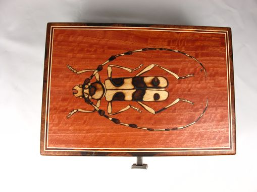 Custom Made Asian Longhorn Beetle Box