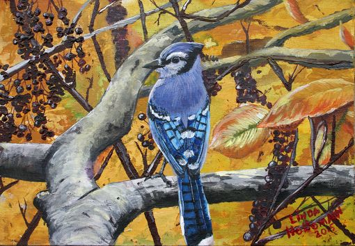 Custom Made Bluejay Acrylic On Canvas