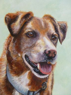 Custom Made Hand Painted Pet Portrait 'Cooper'