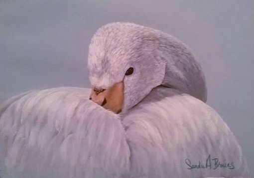"Custom Made ""Grace""  Trumpeter Swan Painting"