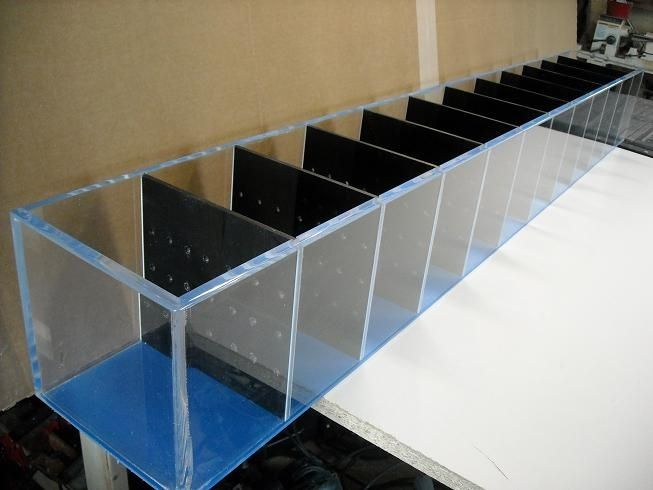 Custom fish divider breeding tank by acrylic creations for Acrylic vs glass fish tank