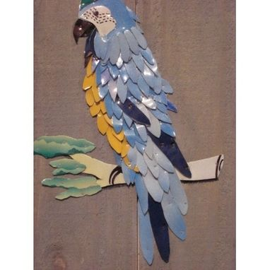 Custom Made License Plate Macaw