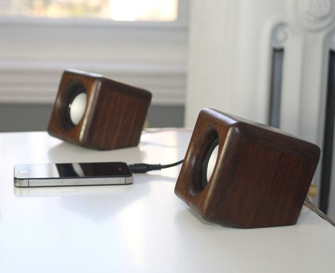 Custom Made Hummingbird Mini Speakers