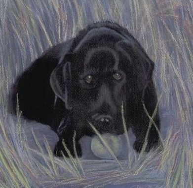 Custom Made Black Lab Pup (Dog Portrait) Pastel - Matted Fine Art Print On Paper (8