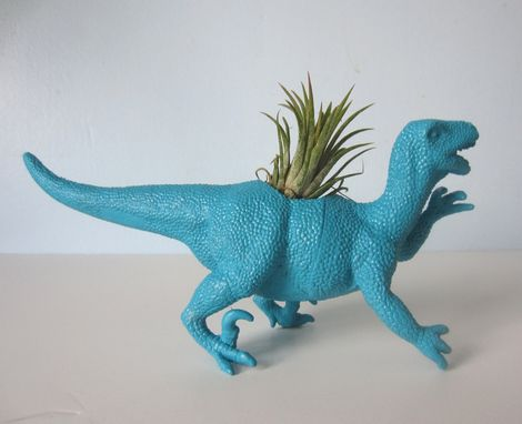 Custom Made Upcycled Dinosaur Planter - Turquoise Blue Raptor With Tillandsia Air Plant