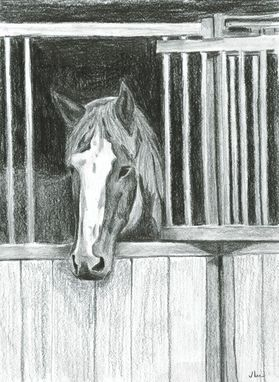 Custom Made Horse Portrait 8 X 10