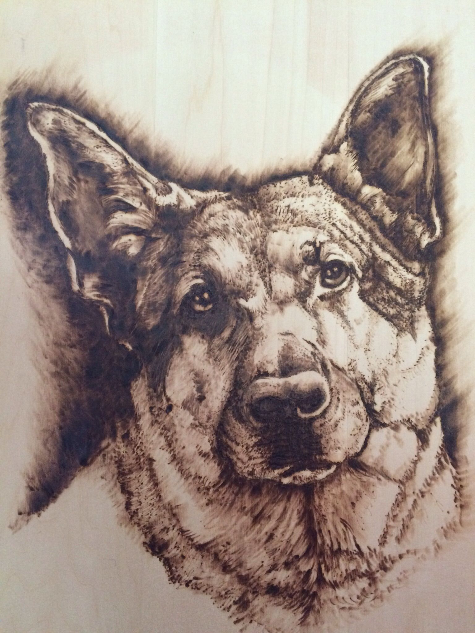Buy A Hand Crafted German Shephard Pet Portrait Pyrography