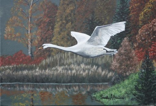 Custom Made Wildlife Paintings, Eagle, Deer, Swan, Wolf, Mustang