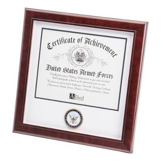 Custom Made U.S. Navy Medallion Certificate Frame