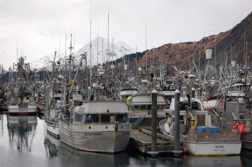 Custom Made Fine Art Photograph Of Fishing Boats In Kodiak