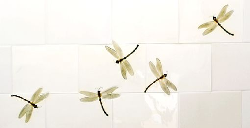Custom Made Dragon Flies - Shower Installation