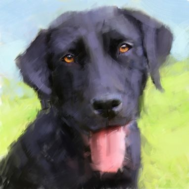 Custom Made Pet Portraits