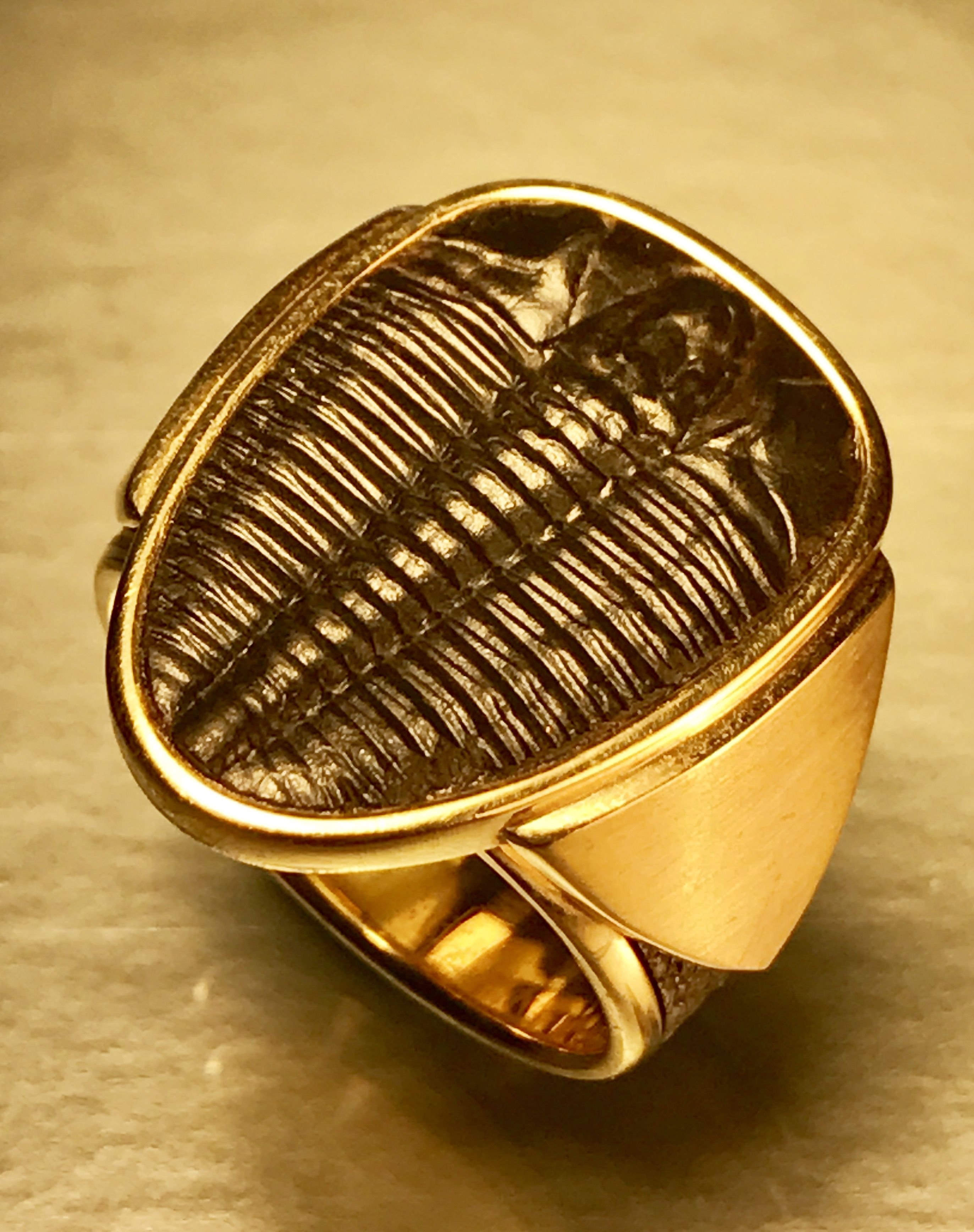 Buy a Custom Made Ancient Trilobite Fossil Mens Ring, 14kt Yellow ...