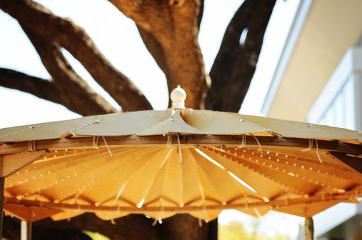 Custom Made Wedding Canopy