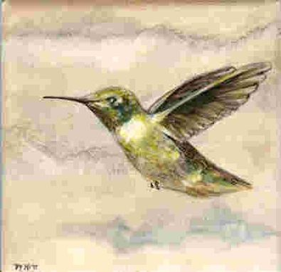 Custom Made Hand Painted Ceramic Tiles:  Hummingbirds Of California