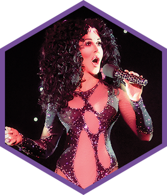 Custom Made Cher Bodysuit