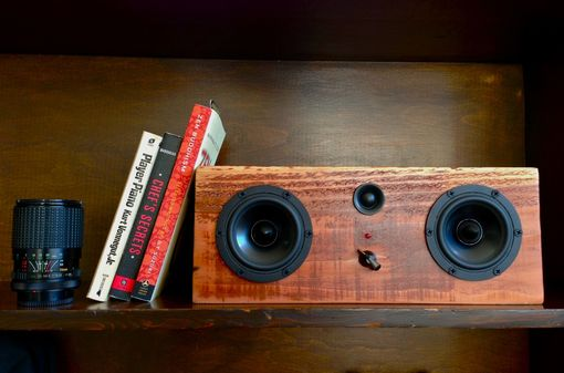 Custom Made Bluetooth Speaker System - Big Chorro St. Box