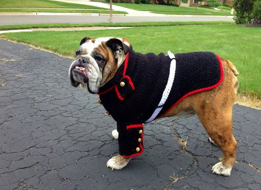Custom Made Bulldog Marine Sweater