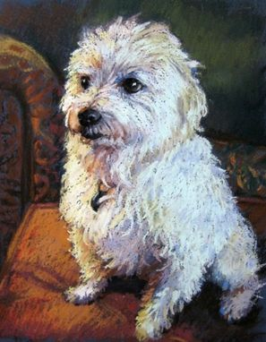 Custom Made Pet Portrait Of A Maltese Dog In Pastel, 10 X 8 Inches