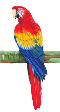 Custom Made Tri Color Macaw (Red, Yellow, Blue)