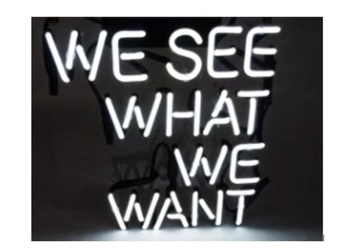 Custom Made We See What We Want Neon Sign