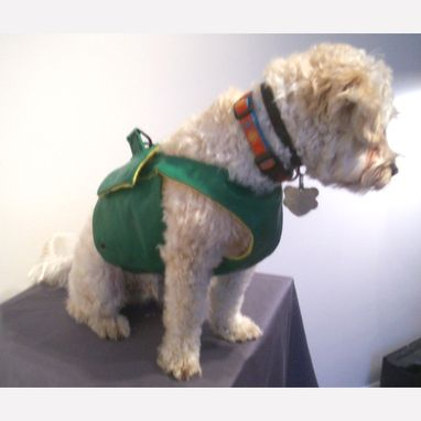 Custom Made Packer Dog Coat