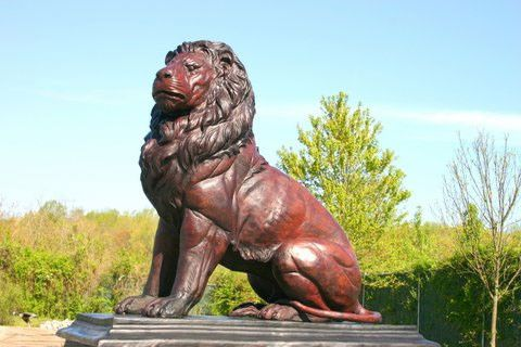 Custom Made Bronze Lions Life Size Bronzes - Custom Bronze Statues & Sculptures - Lost Wax Casting