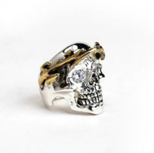 Custom Made Skull Of Zeus Precious Metals
