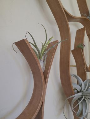 Custom Made Tillandsia Support #2