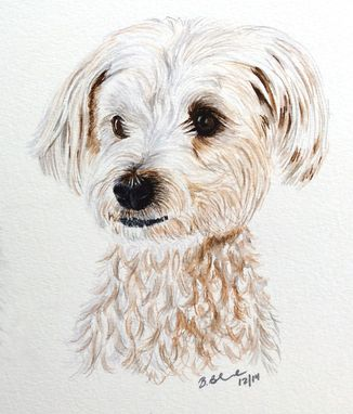 Custom Made Custom Pet Portrait - Original Watercolor Illustration