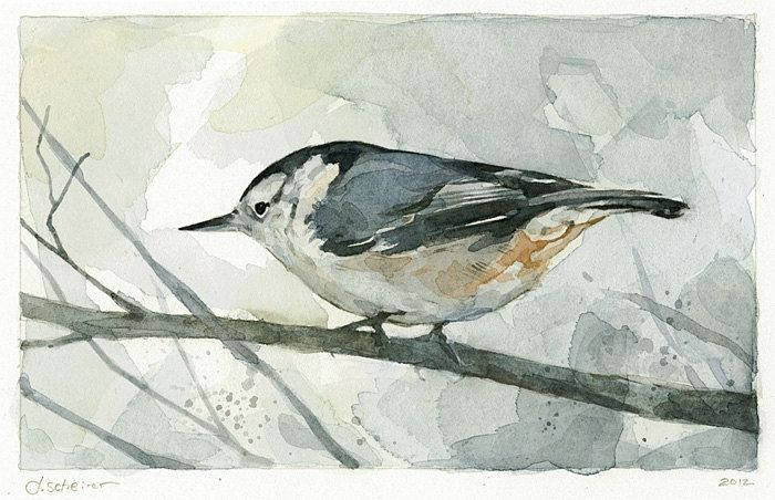 Handmade Nuthatch Bird Watercolor Painting. by david ...