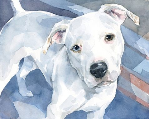 Custom Made Pitbull Dog Custom Watercolor Portrait