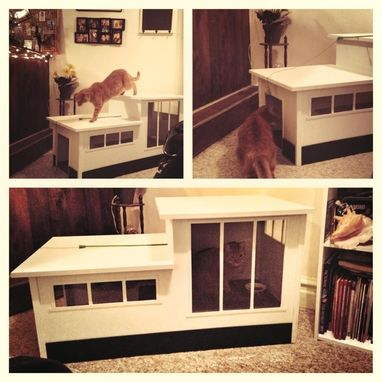 Custom Made Modern Styled Cat House