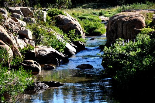 Custom Made Nature Photograph Of An Unnamed Creek In The Sierra Nevada