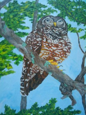 "Custom Made Painting: ""Guardian Of The Lost Forest: Spotted Owl"""