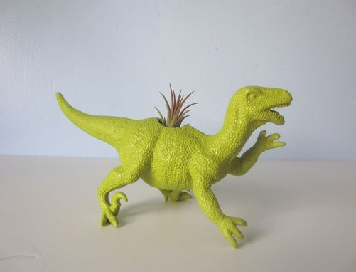 Custom Made Upcycled Dinosaur Planter - Green Raptor With Tillandsia Air Plant