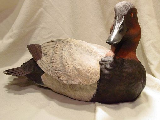 Custom Made Canvasback Duck