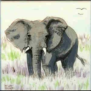 Custom Made African Wildlife Tiles
