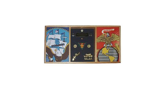 Custom Made 3 Bay Military Shadow Box