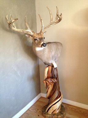Custom Made Twisted Juniper Shoulder Mount Taxidermy Pedestal