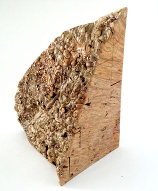 Custom Made Big Leaf Maple Burl Jewelry Box