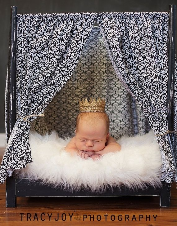 Custom canopy newborn photography prop bed by